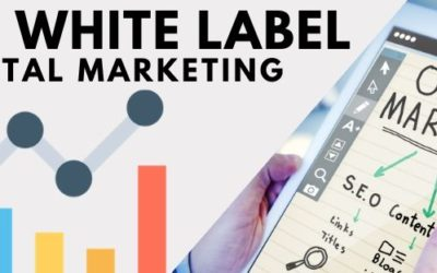 8 Reasons why you need a white label digital marketing agency