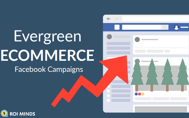 Facebook ecommerce campaign